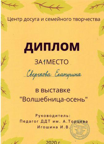 b_338_470_16777215_00_images_Ekocentr_Nashi_meropriyatiya_2020-2021_gorodskaya_vistavka_02.jpeg